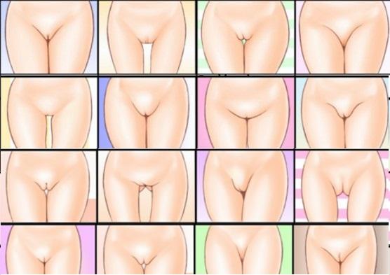 forma-vagin